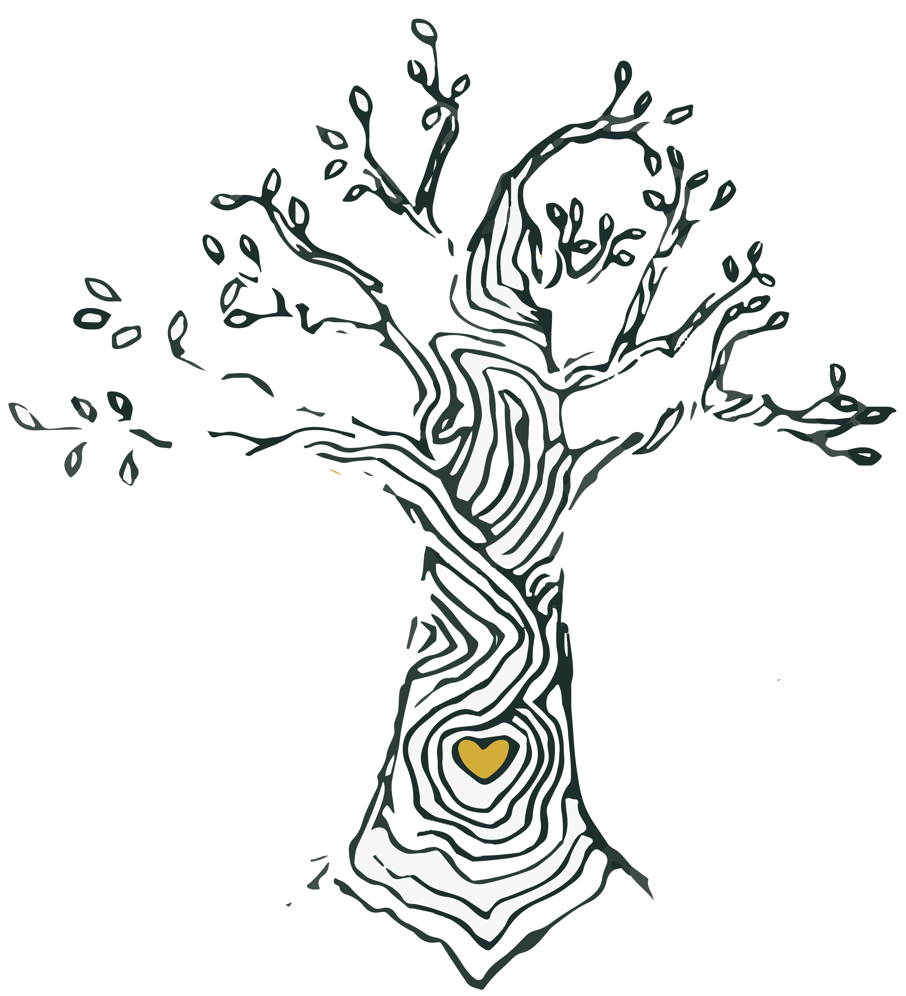 My yogastudio boom spijkenisse yin yoga